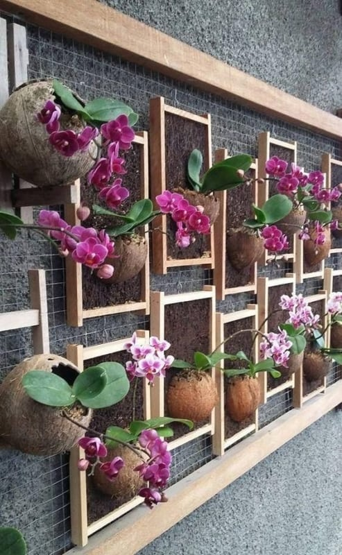muro com orquidário vertical