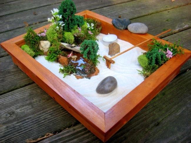 mini zen garden com plantinhas