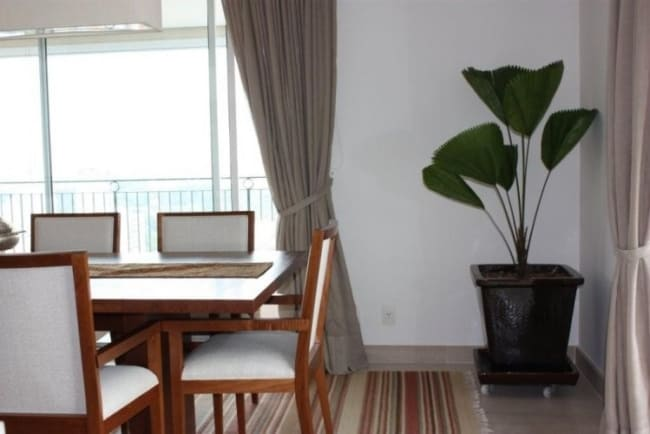 Decoração de sala de jantar com palmeira leque no canto