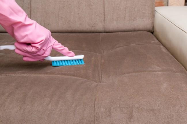 Higienização do sofá da sala