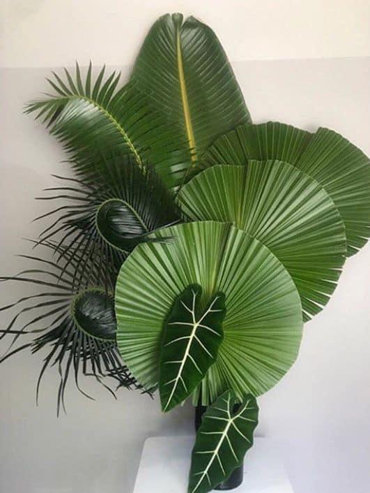 Outro modelo de arranjo com palmeira licuala
