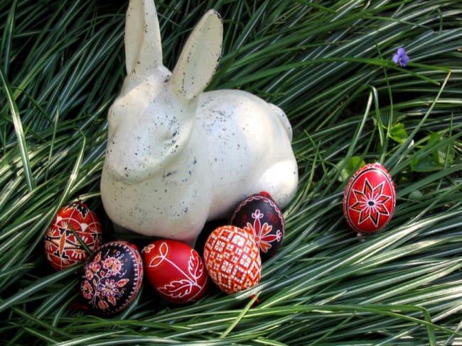 Ovos coloridos e coelho para por no jardim