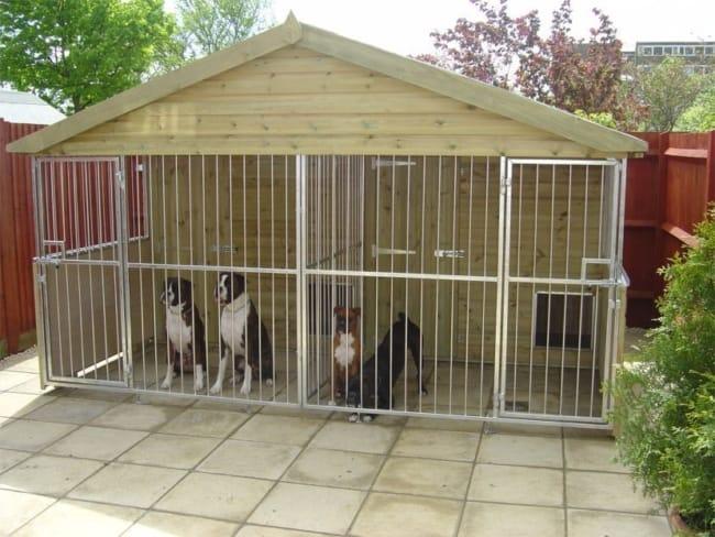 Canil de cachorro de madeira