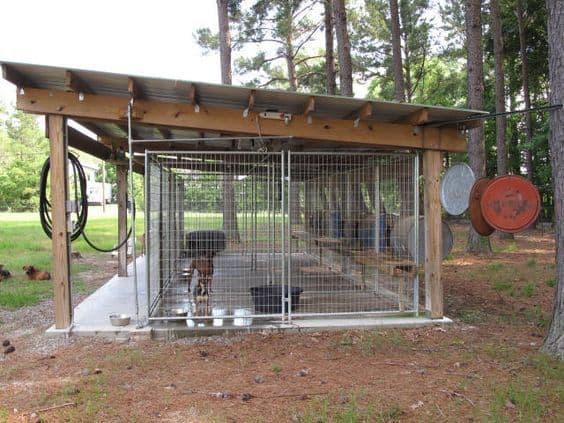 Canil de madeira planejado