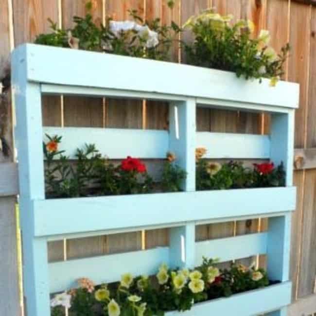 Floreira de paletes para parede azul22