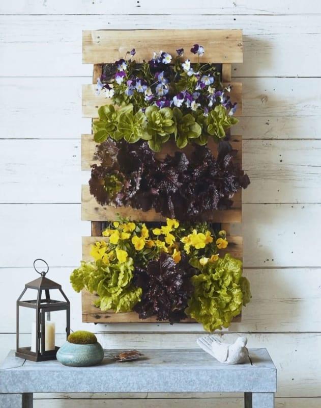 Floreira de paletes para parede pequena29