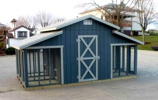 canil azul de madeira