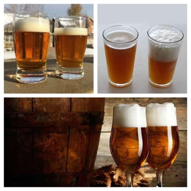 cerveja artesanal tipos