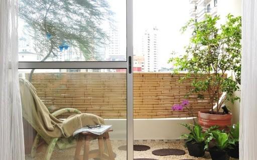 decoração com clusia em varanda