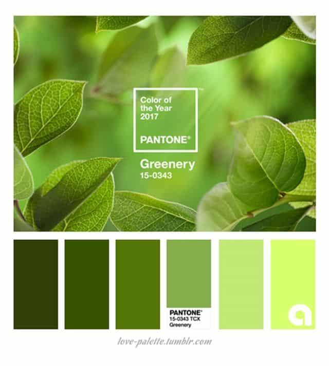 greenery Pantone 1