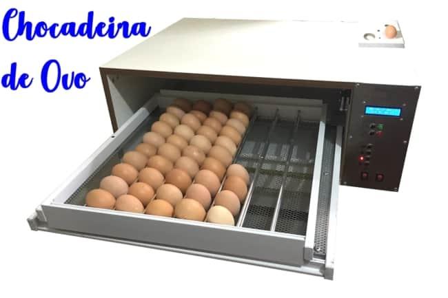 chocadeira de ovo