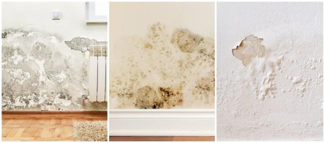 como resolver problema de umidade nas paredes