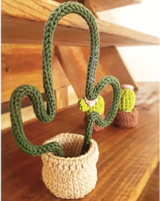cacto decorativo de i cord