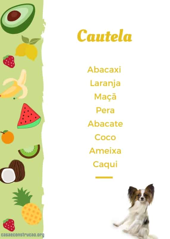 frutas que cachorro devem comer com cuidado