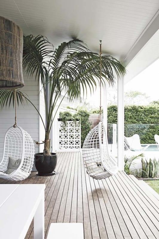 Areca Bambu no quintal