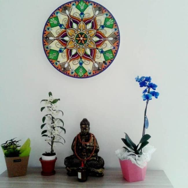 Orquídea Azul em casa