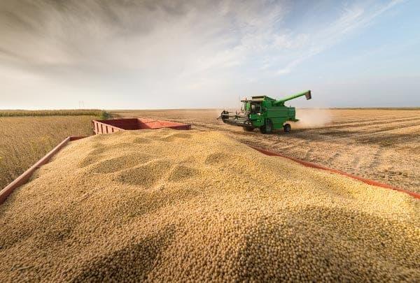 como é a colheita de soja