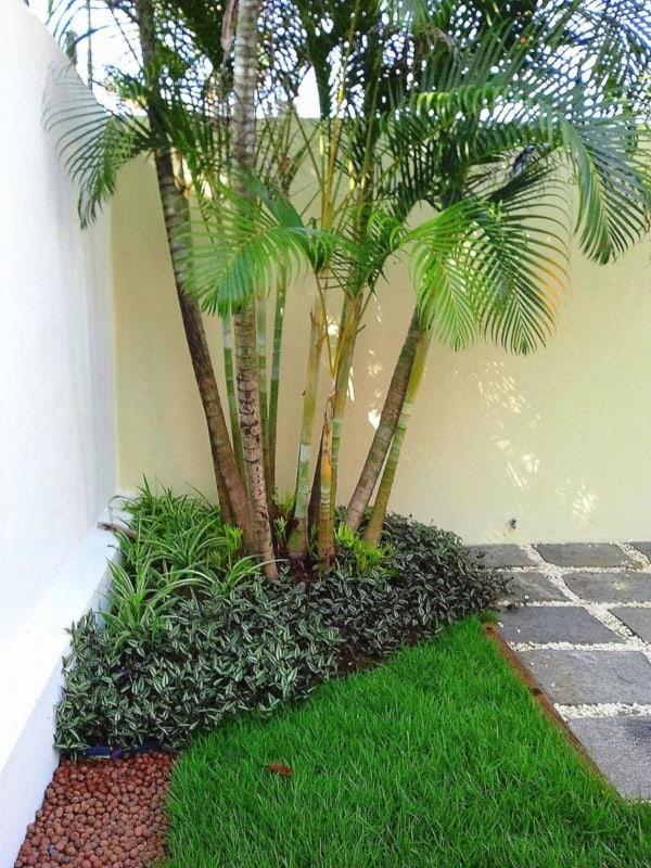 decor com Areca Bambu