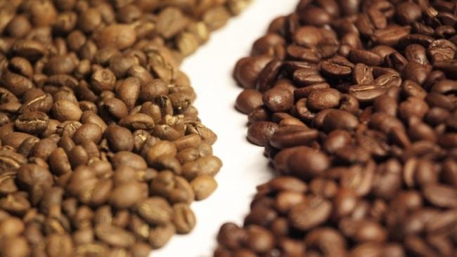 especies de cafe