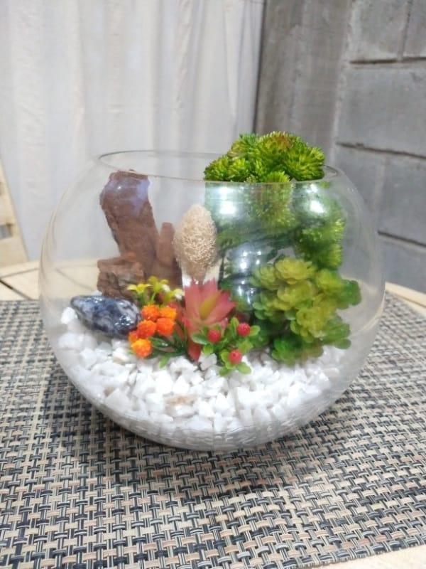 Terrário de suculentas em aquario pequeno