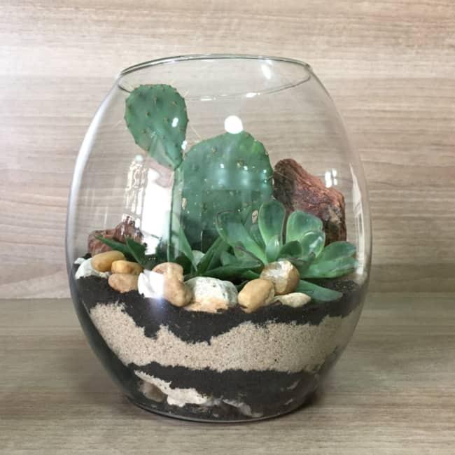 Terrário de suculentas em vidro grande