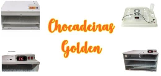 0 chocadeiras golden