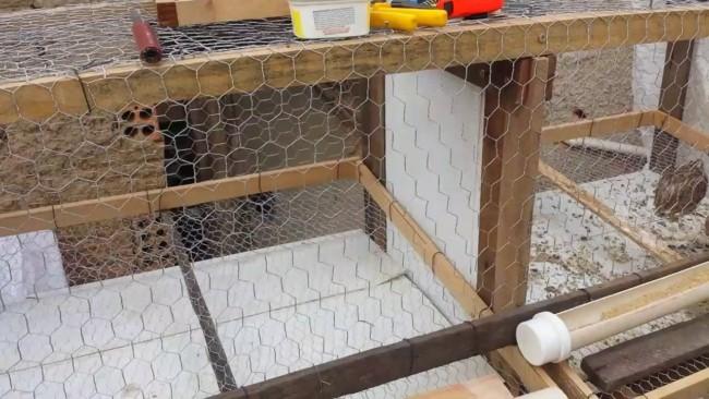como construir gaiola para codorna