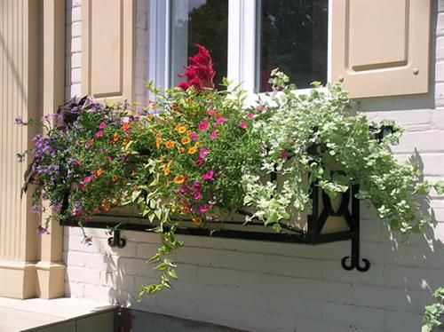 floreira de janela baixa