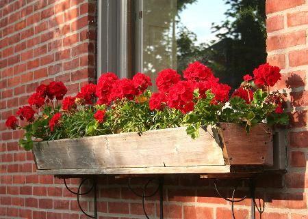 floreira de janela de madeira de construção