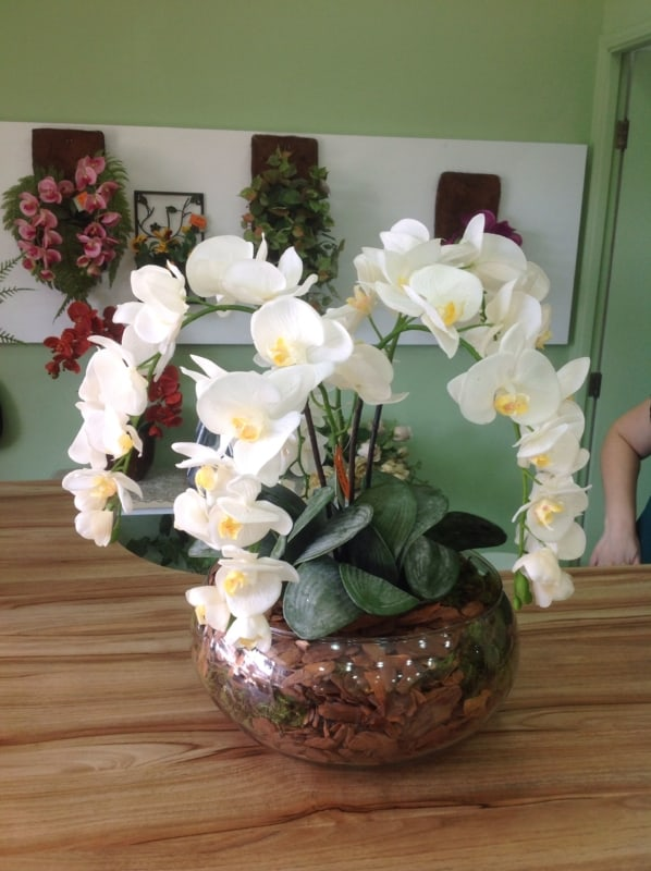 mini orquídeas em masa da cozinha