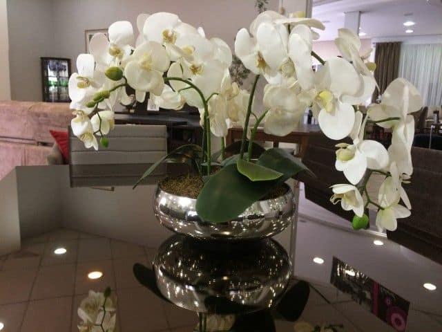 mini orquídeas em mesa de jantar