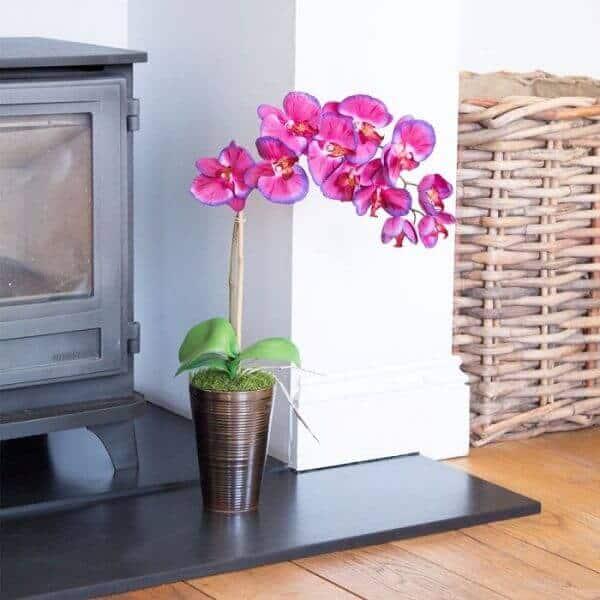 mini orquídeas em vasos no chão
