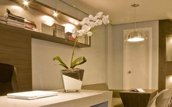 mini orquídeas na casa