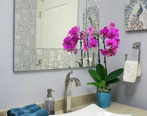mini orquídeas no banheiro