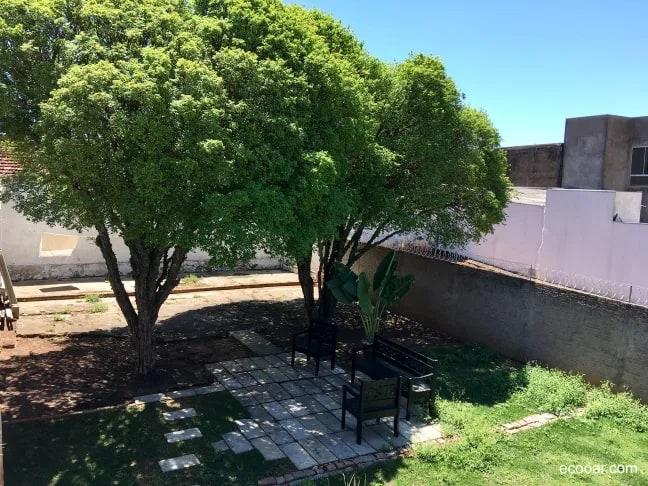 quintal com jabuticabeira