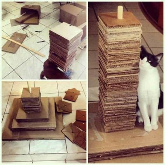arranhador de papelao simples para gato