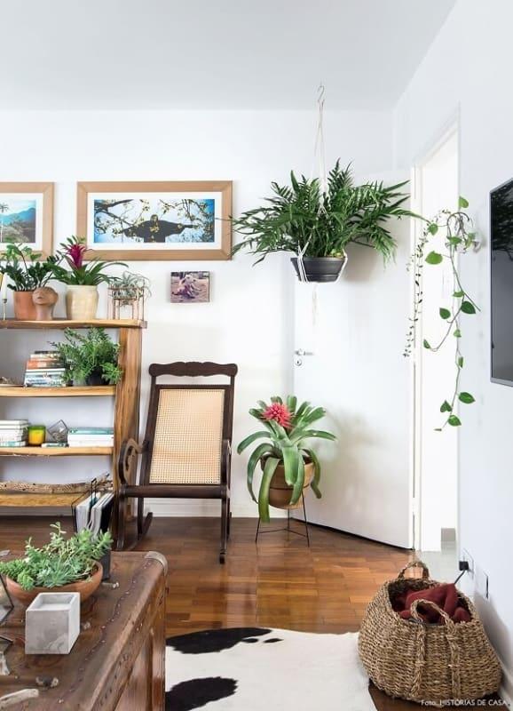 Apartamento decorado com plantas e uma maneira de trazer a natureza para dentro de casa