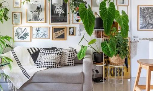 Apartamento decorado com plantas pendentes sao muito lindos