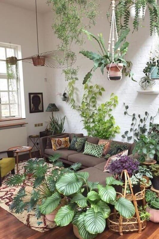 Mesmo estando em ambientes internos as plantas necessitam de iluminacao natural mesmo que de forma indiret