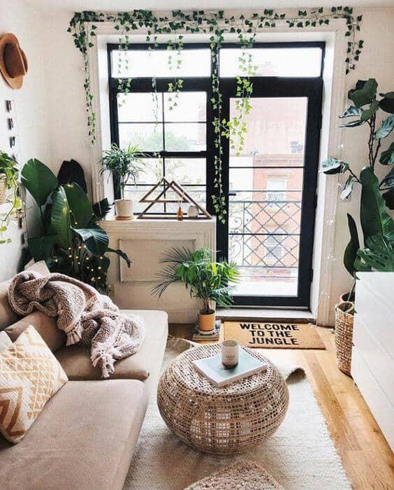 Para o ambiente interno do apartamento prefira plantas de sombra ou meia sombra