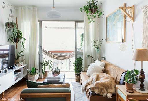 Para quem adora a natureza apartamento decorado com plantas e uma otima saida para estar mais perta dela no dia a dia