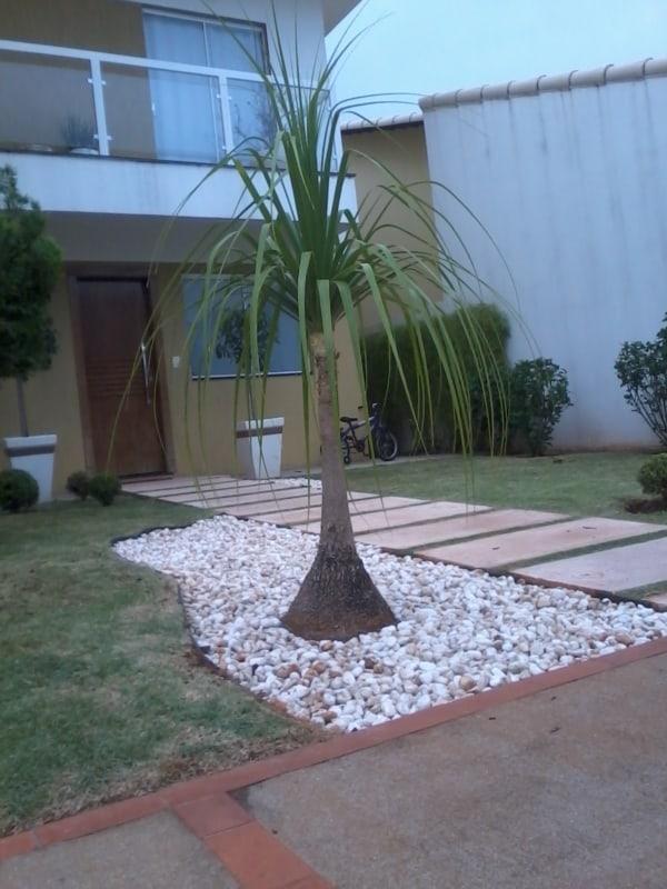 fachada de casa com pata de elefante na jardinagem