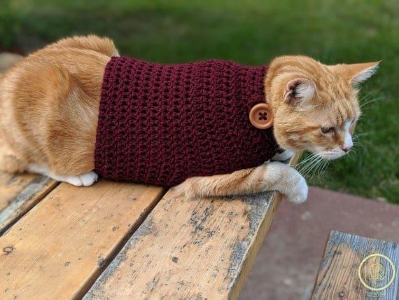 gato com roupa de croche simples