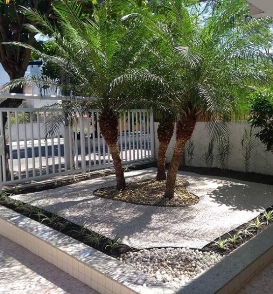 jardim simples com pedras e palmeira ana