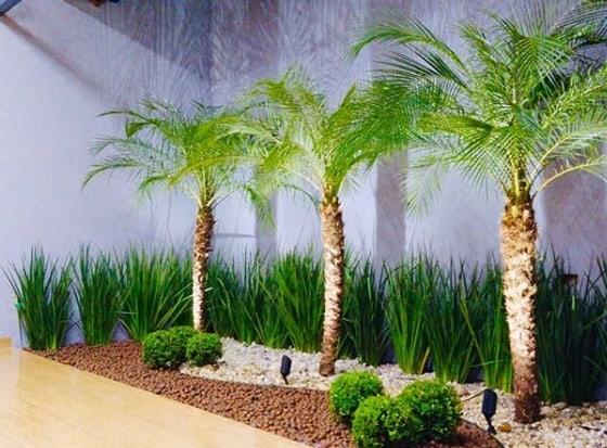 jardim com iluminacao noturna e palmeira fenix