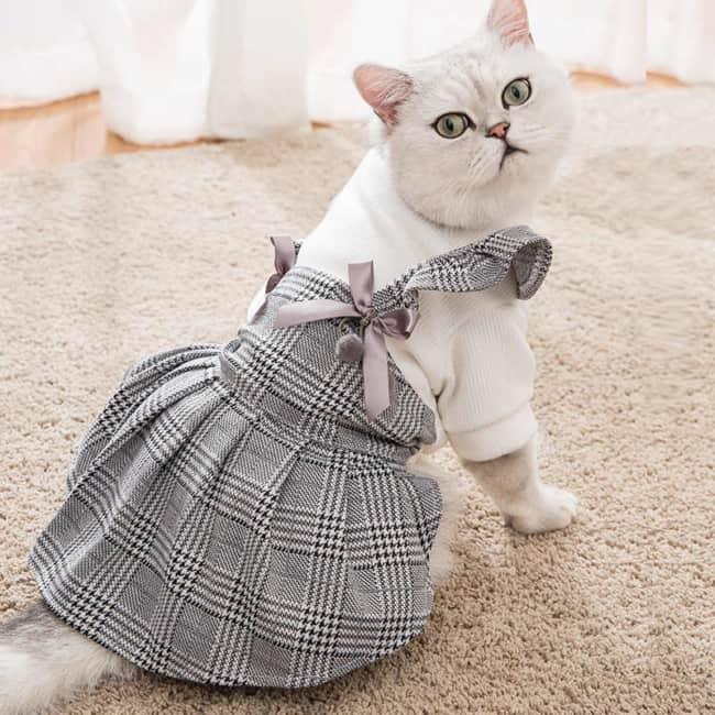 vestido para gata