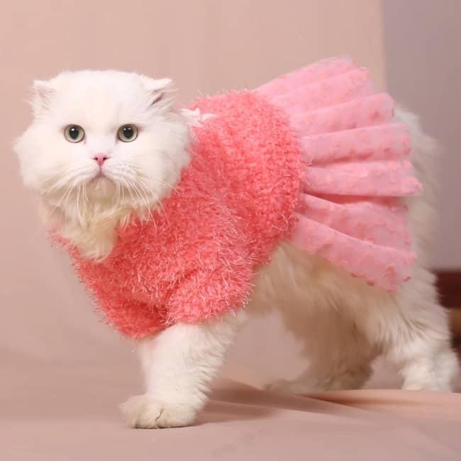 modelo de vestido para gata
