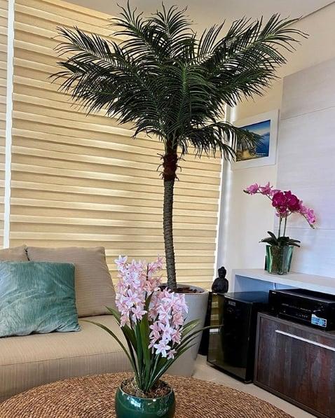 vaso vietnamita com palmeira fenix na decoracao