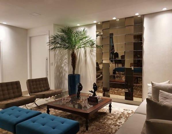 sala decorada com vaso de palmeira phoenix