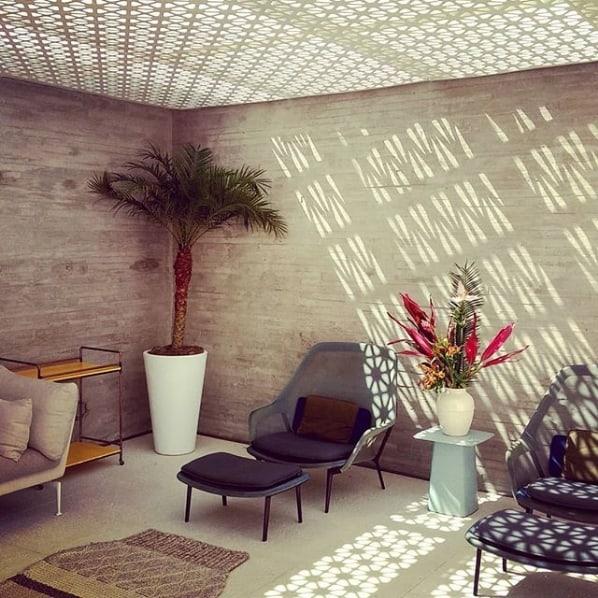 vaso de palmeira decorando o ambiente interno